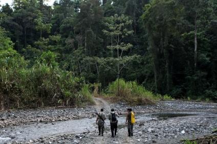 Mauricio, Filander (rangers), Reporter (danielle) walking in national park © James Sherwood - Bluebottle Films