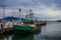 Fishing Co-Op - Bermagui © Danielle Ryan - Bluebottle Films Sept/Aug 2014