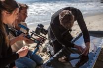 James filming researcher Nathan Bass tagging a Port Jackson shark © James Sherwood - Bluebottle Films