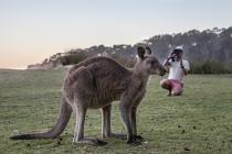 James Sherwood, Bluebottle Films, with kangaroo - Bateman's Marine Park © Danielle Ryan Sept/Aug 2014