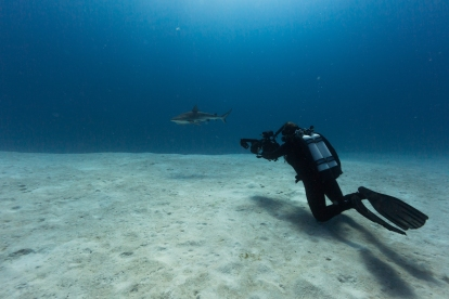 Julia Summerling filming a shark © James Sherwood, Bluebottle Films