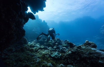 Julia Summerling, Mike Ball Dive, exciting a cave © James Sherwood, Bluebottle Films