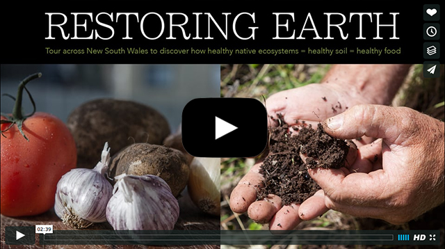 Restoring Earth Web Link
